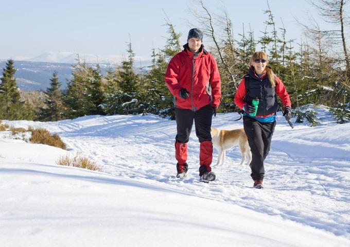 Ett par som promenerar i snö